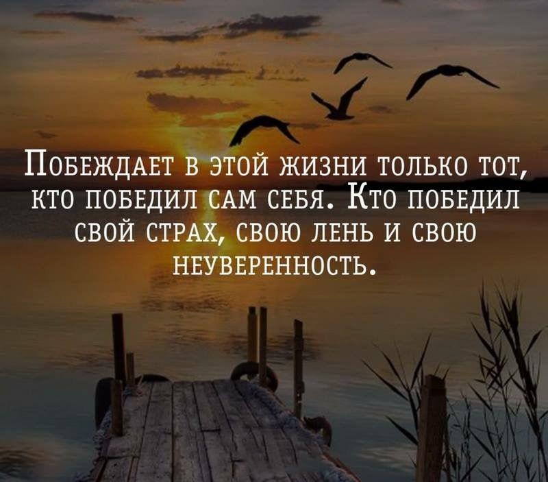 Победи себя победи всех цитата