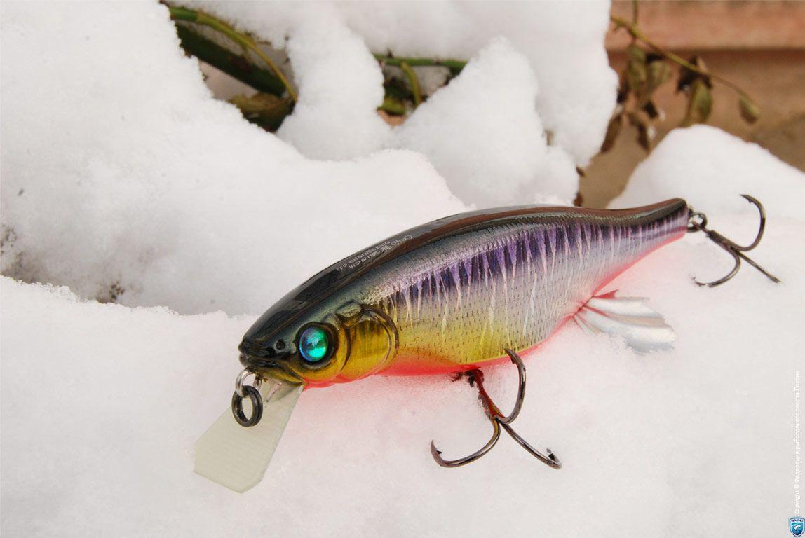 Share for Bass fishing jerkbaits