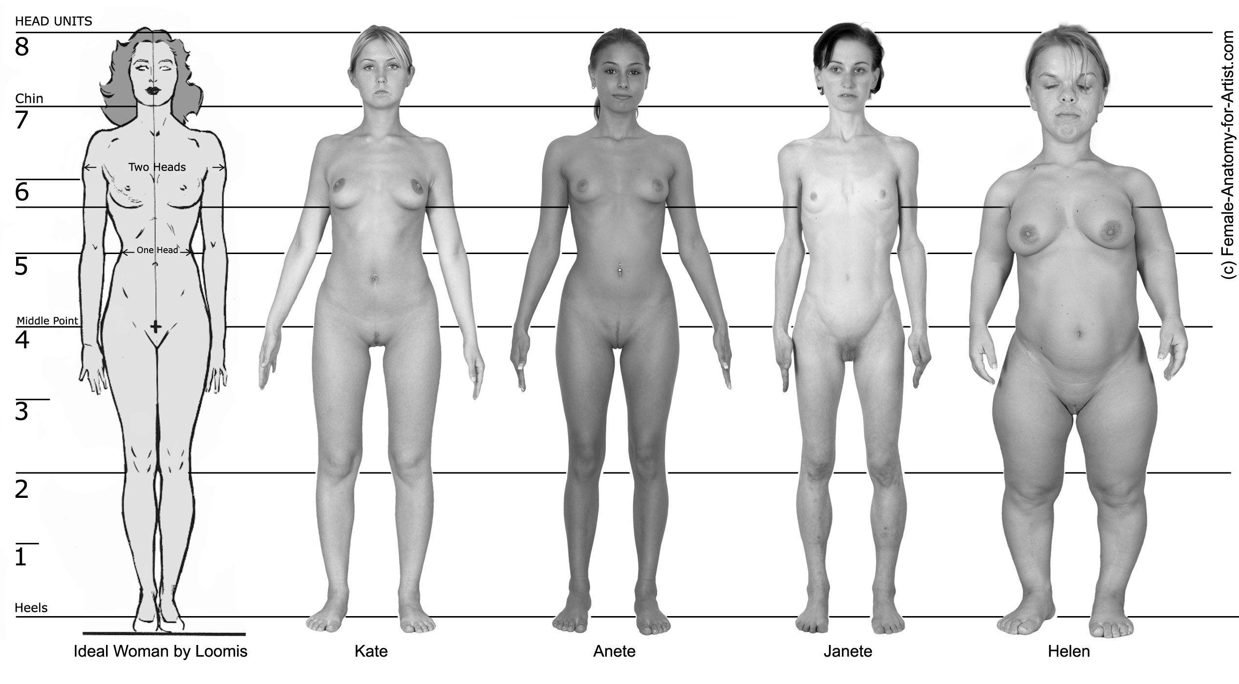 Формы женского тела порно 4 фотография