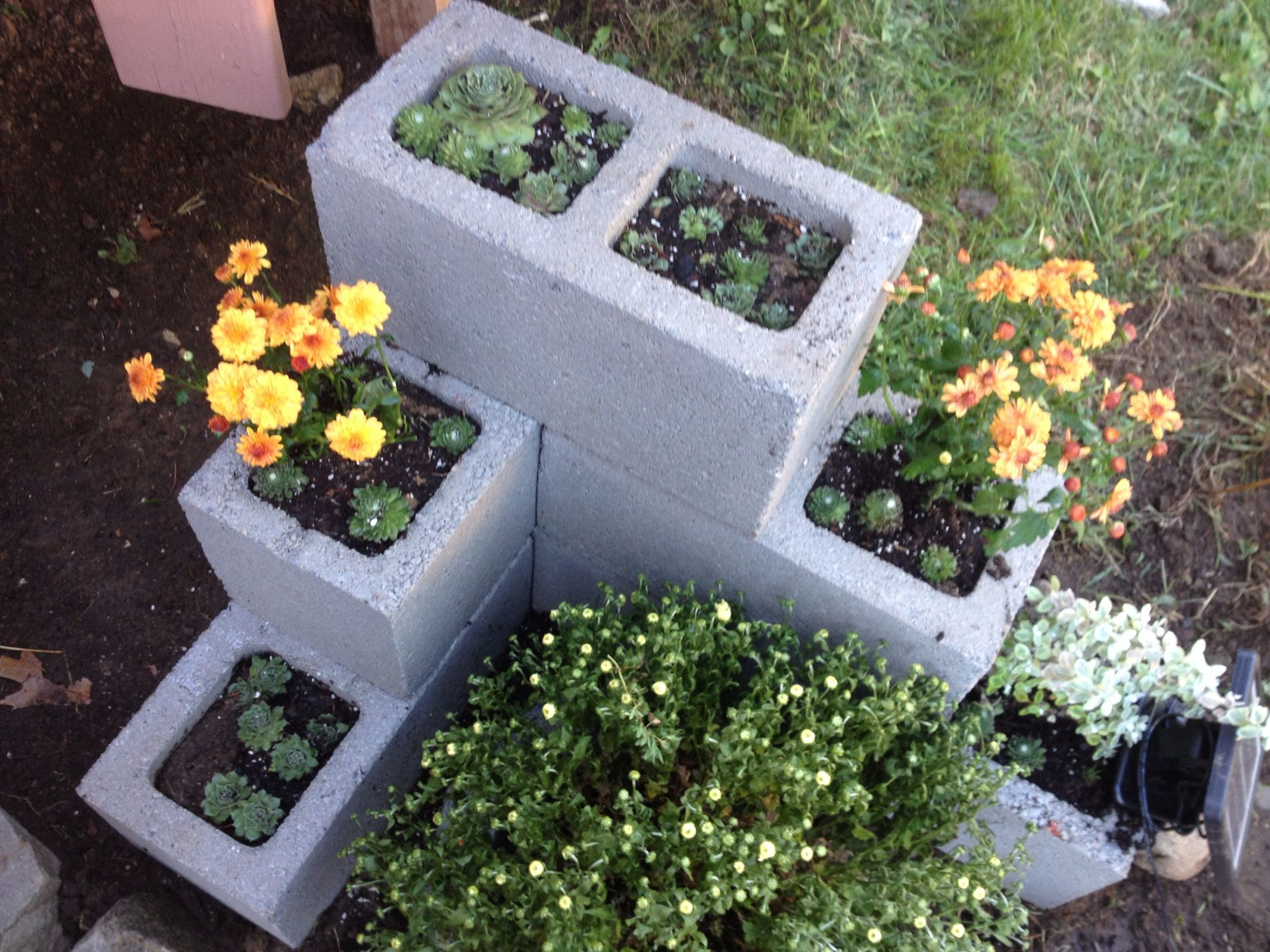 dyi cinder block planter yapo pinterest. Black Bedroom Furniture Sets. Home Design Ideas