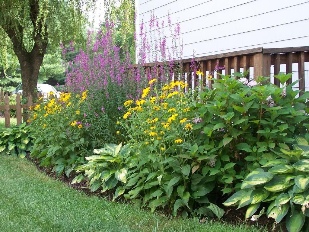 Side Yard In A Garden 2 Pinterest