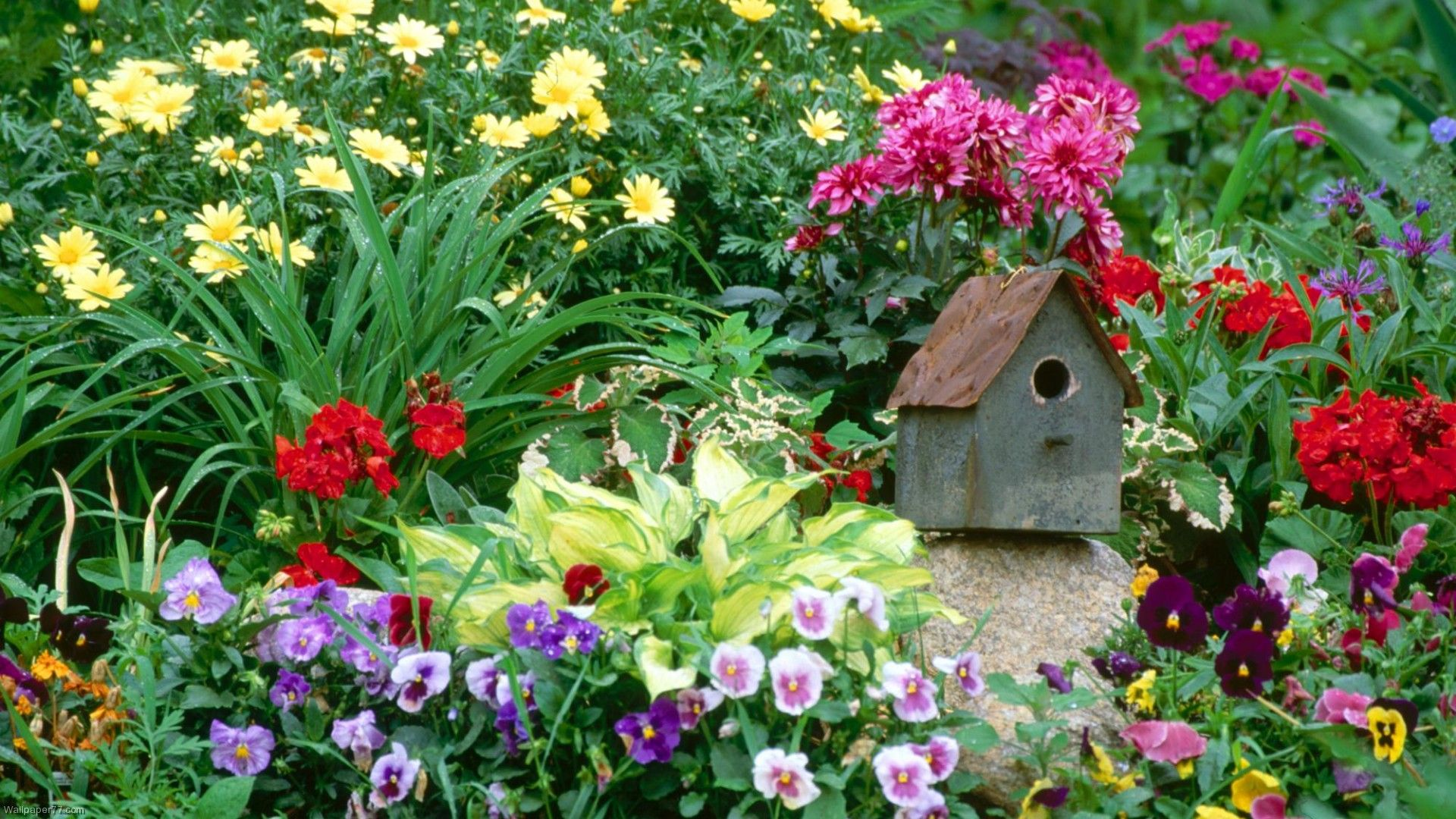 Simple big small gardens pinterest for Simple small garden
