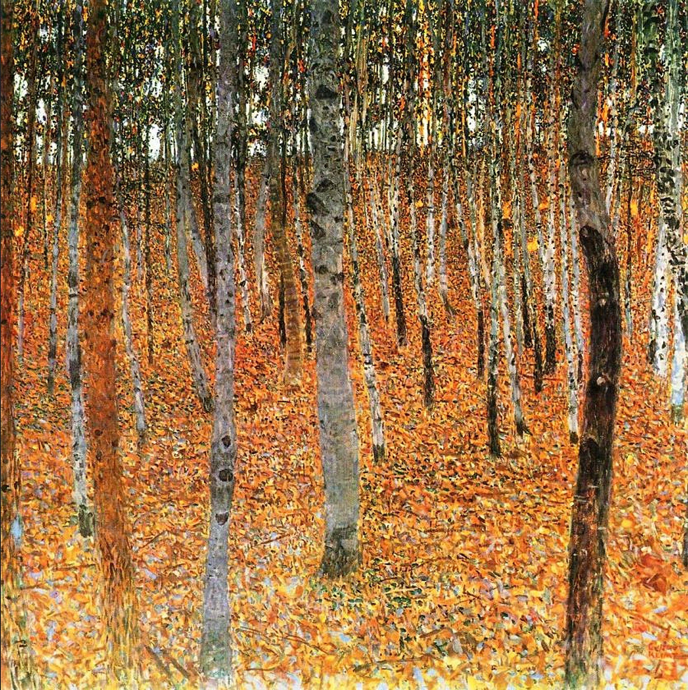 Gustav Klimt 'Birch Forest'   Gustav Klimt   Pinterest