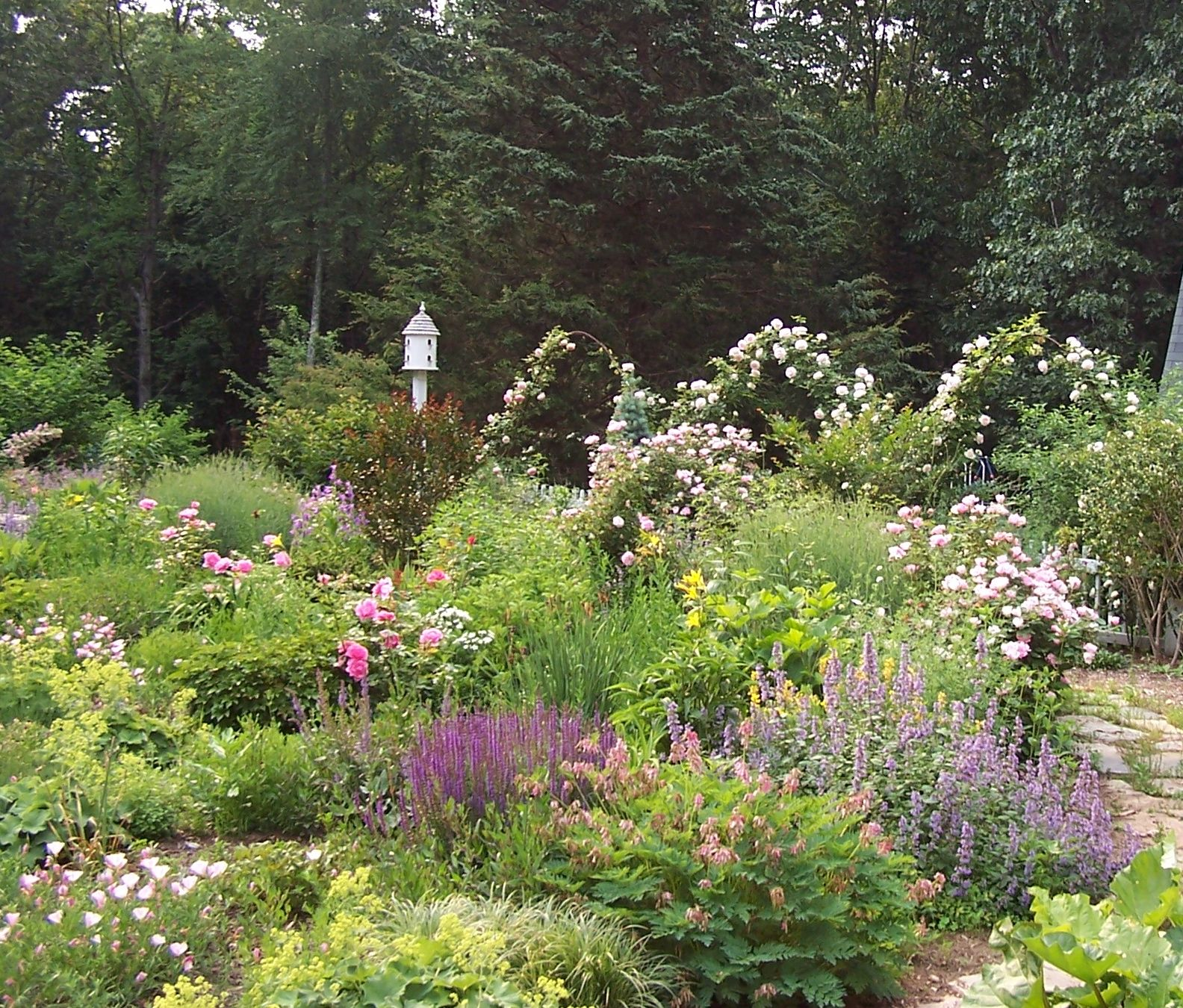 Perennial garden garden ideas pinterest for Perennial landscaping ideas