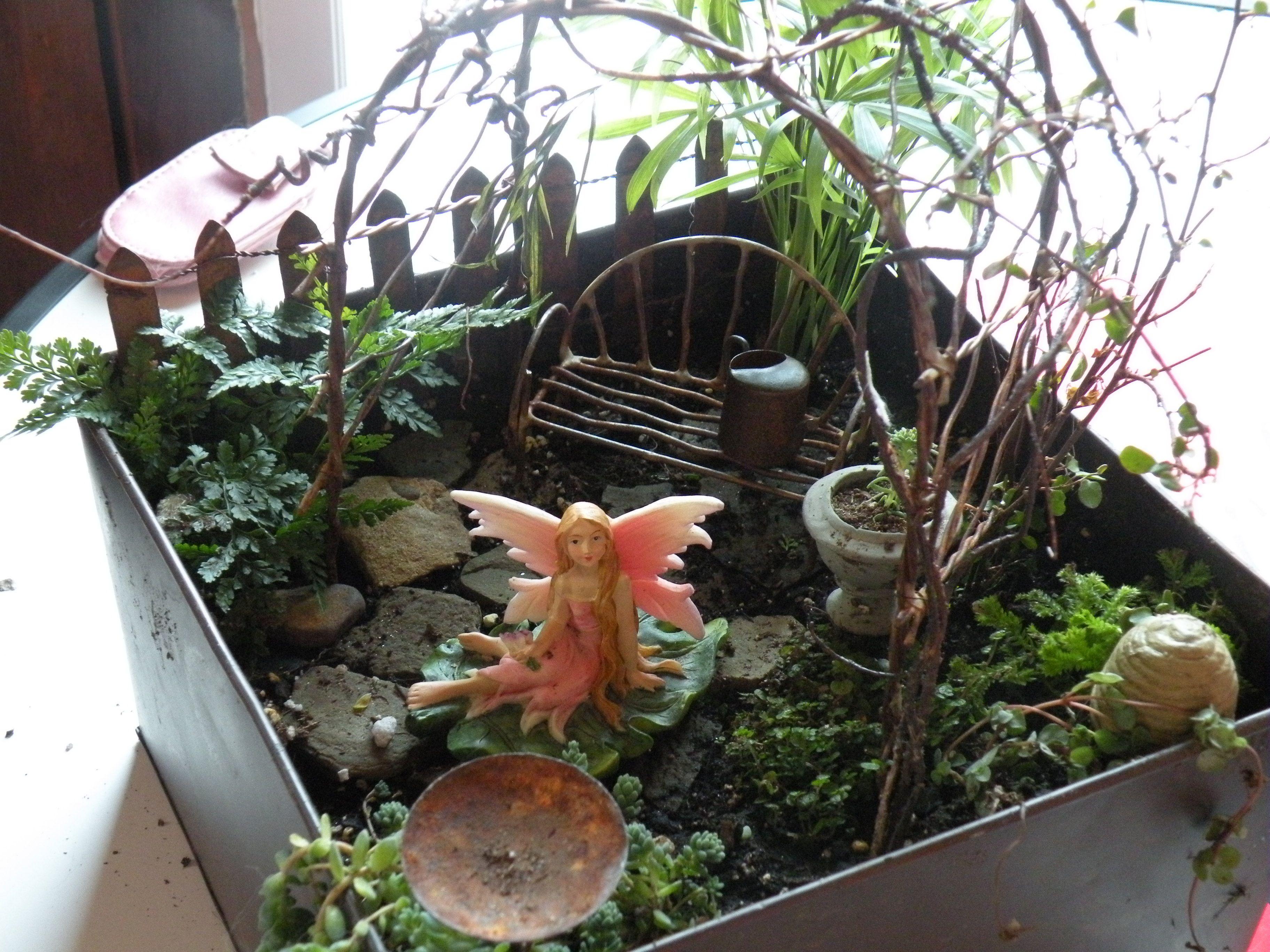 indoor fairygarden fairy gardens and such pinterest. Black Bedroom Furniture Sets. Home Design Ideas