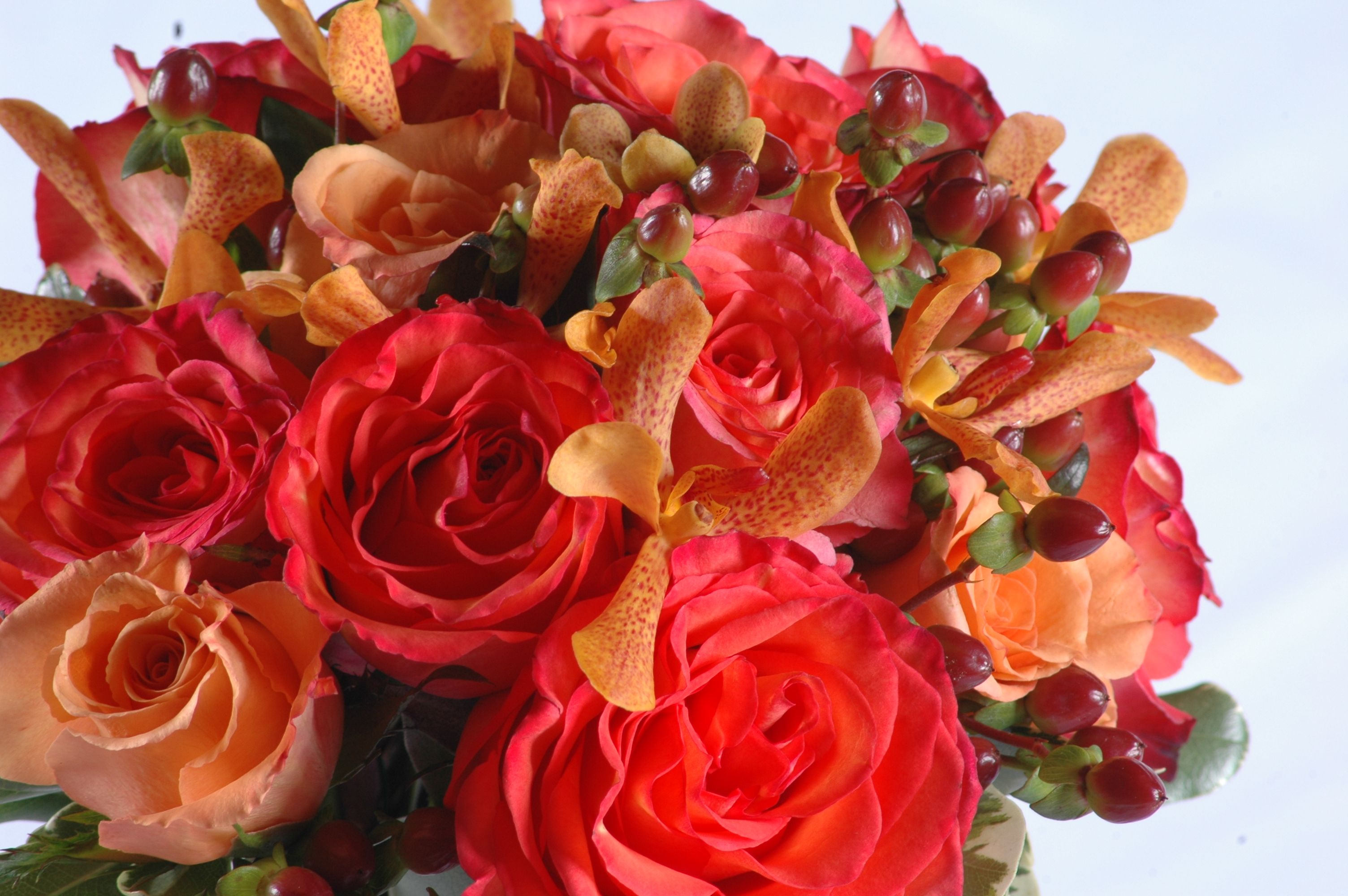 Of Roses Orchids And Berries Hy Vee Dance Flowers Pinter