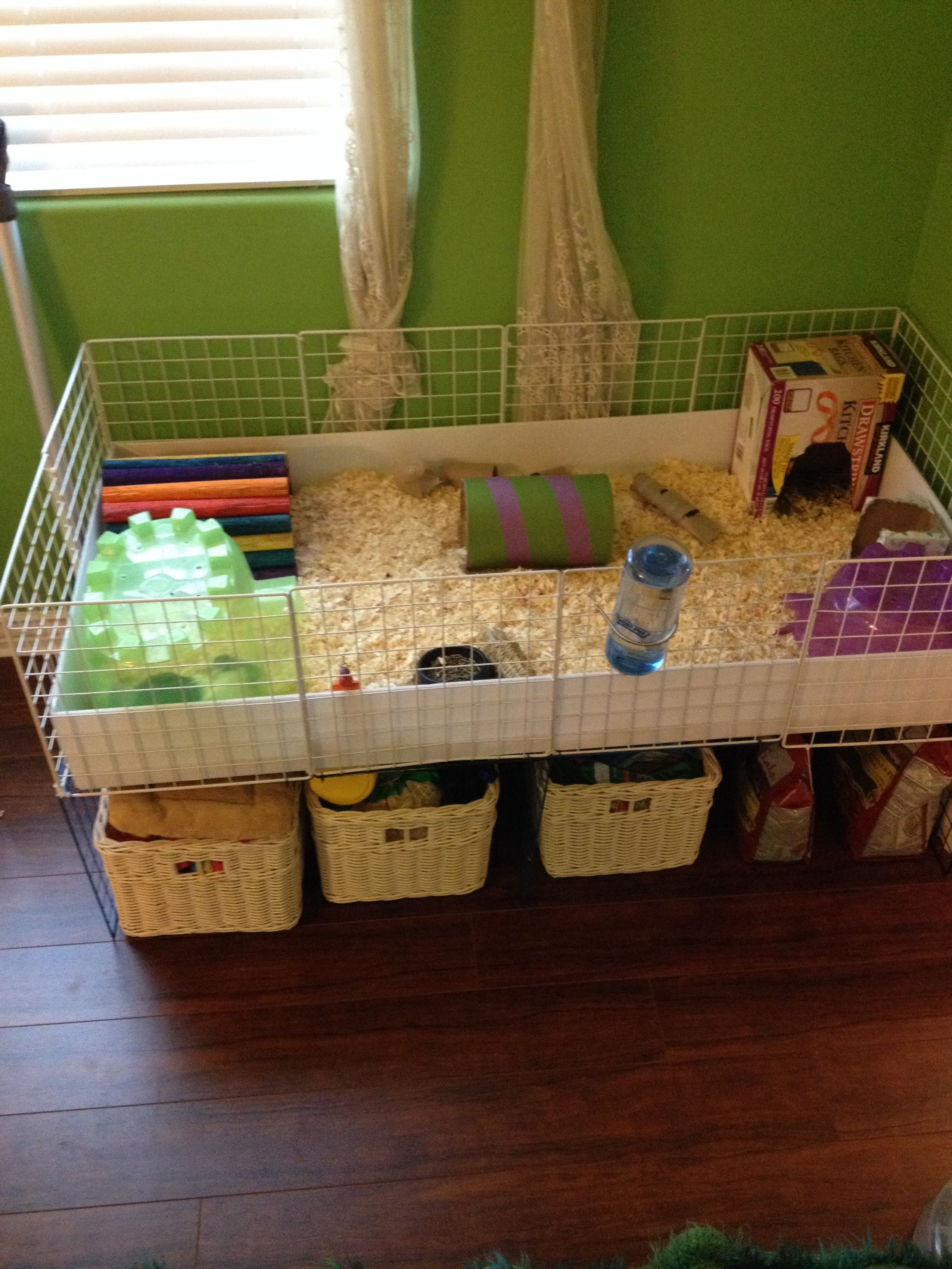 2x4 c c cage for my two guinea pigs guinea pigs pinterest for Diy c c guinea pig cage