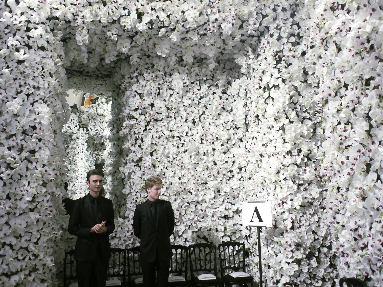 Стена из белых цветов фото