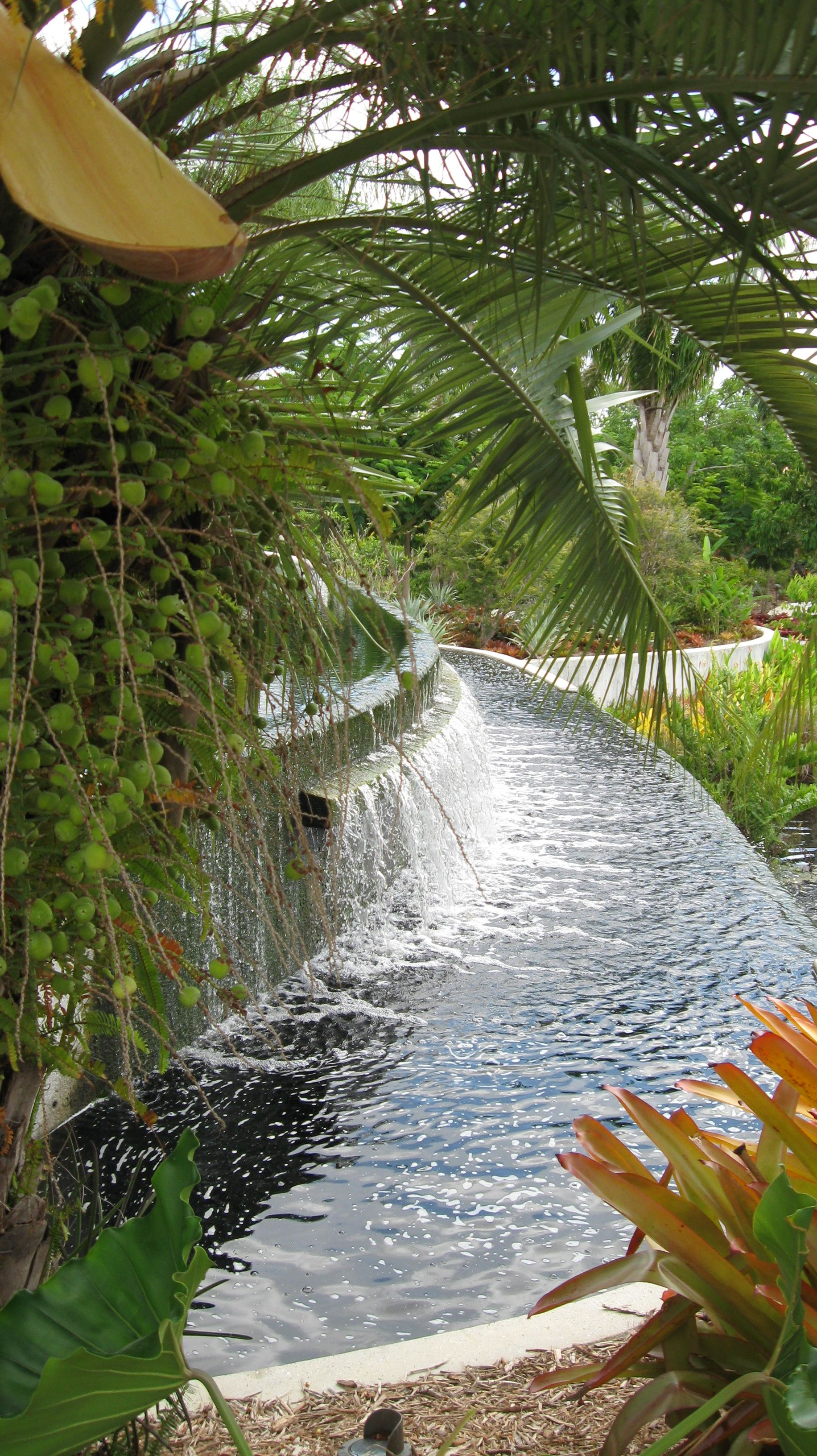 Naples Botanical Garden America I Want To See It All