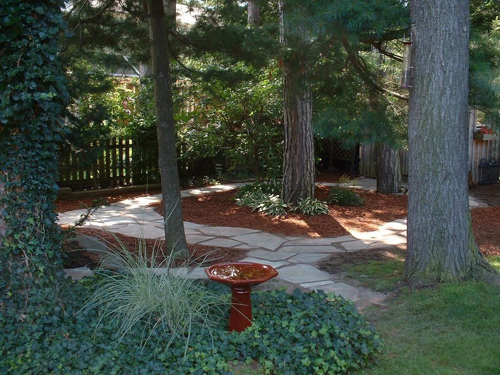 Shady backyard shade garden pinterest for Shady backyard landscaping ideas