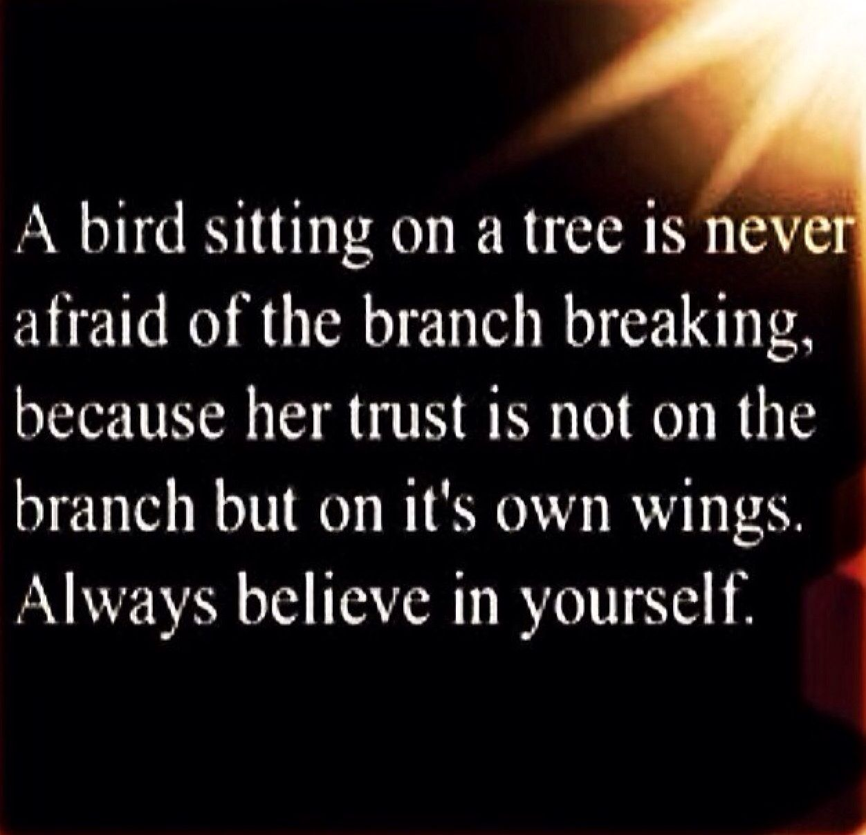Believe in yourself  MOTIVATIONAL QUOTES  Pinterest