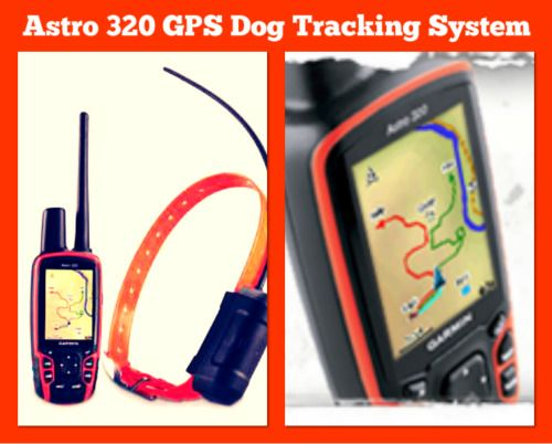 gps dog tracking system iphone app