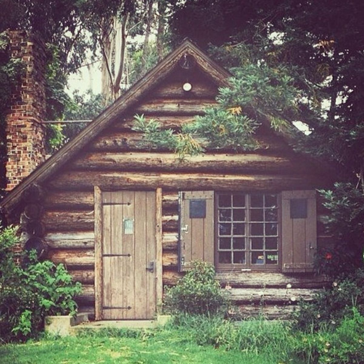 Superb img of Small log cabin in the woods Homes Pinterest with #588546 color and 1201x1202 pixels