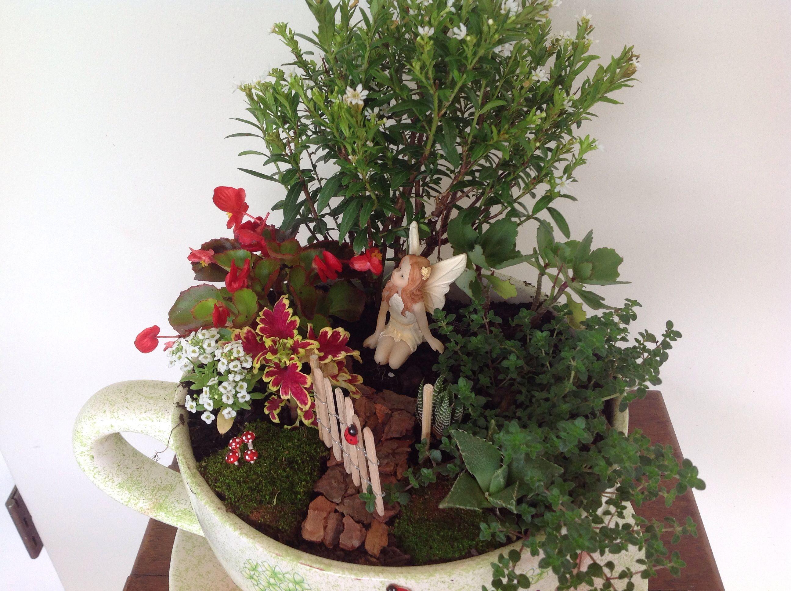 Fairy Garden In A Giant Teacup Planter Garden Idea