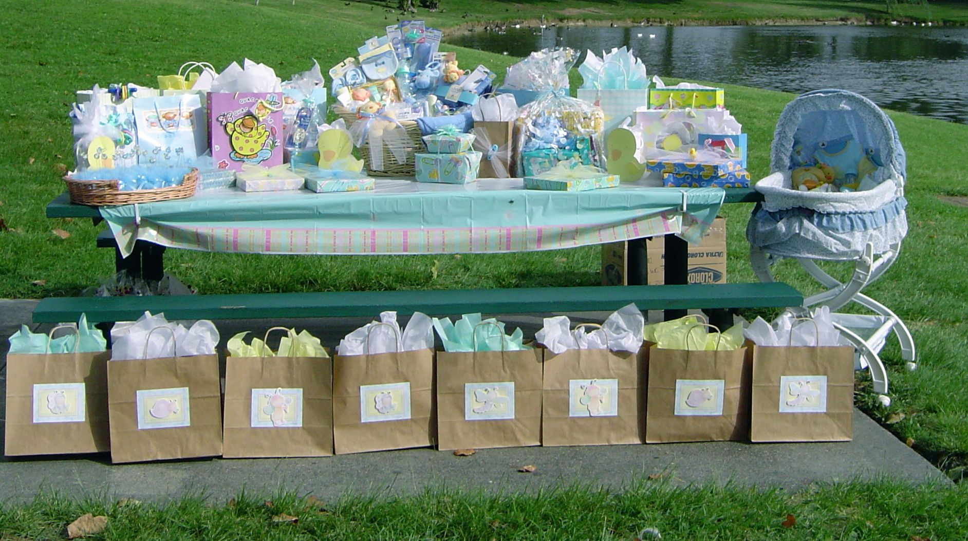 baby shower outdoors audjiefied baby showers parties pinterest