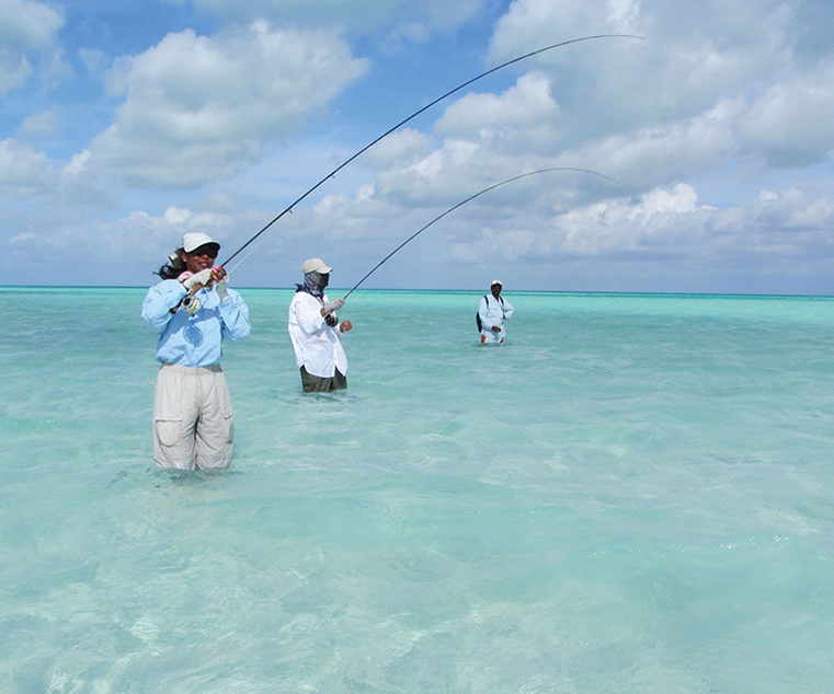 Christmas island fly fishing pinterest for Christmas island fishing