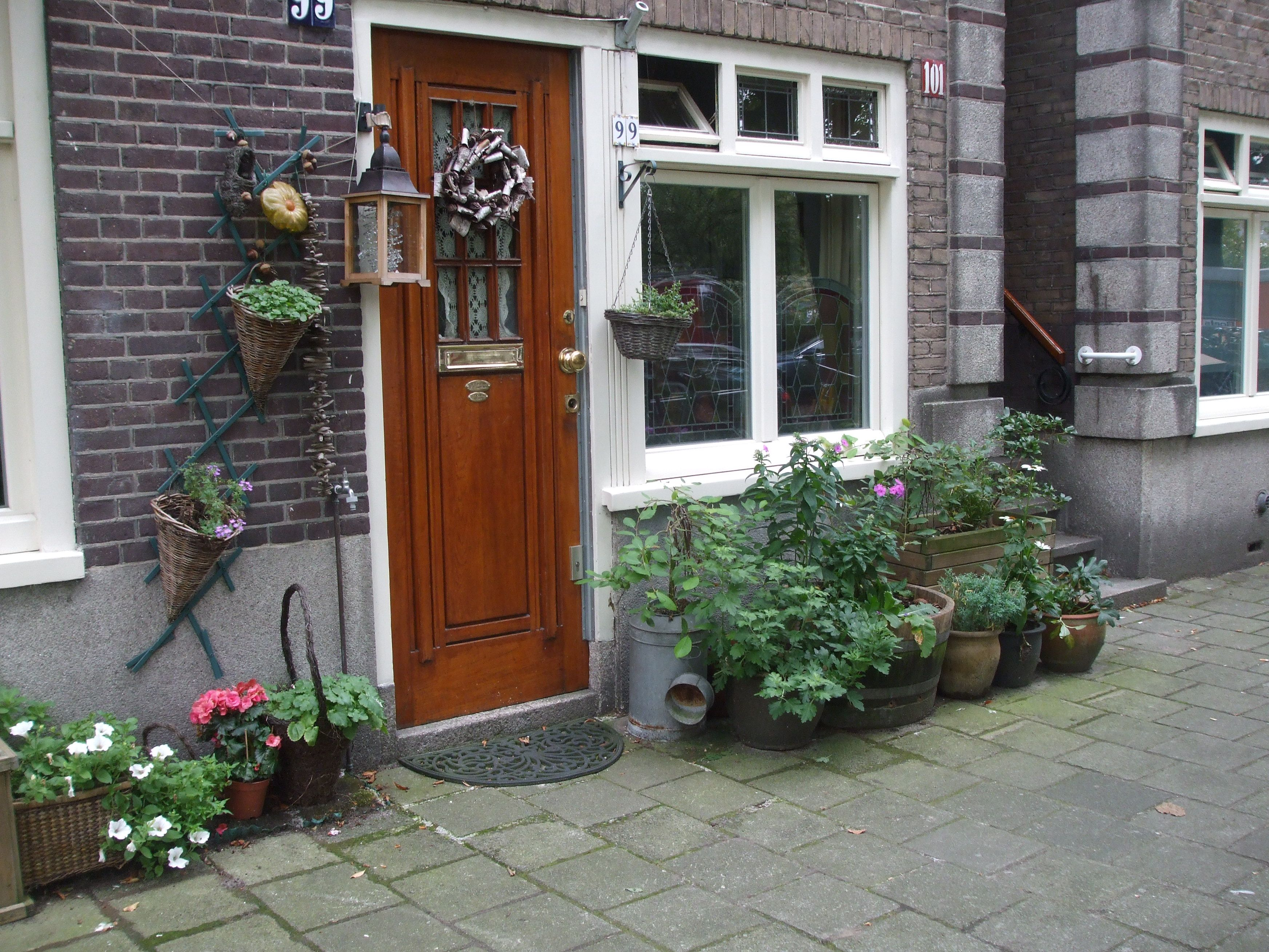 In Front Of A House Plants And Flowers In Pots In The