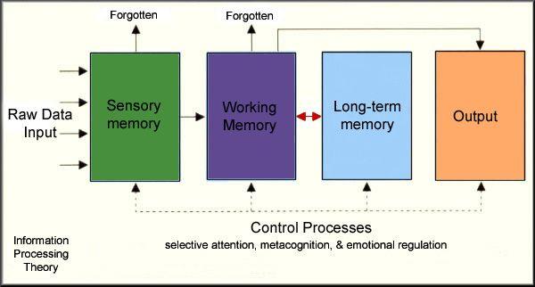 Conceptual physics homework help – Conceptual Physics Worksheets