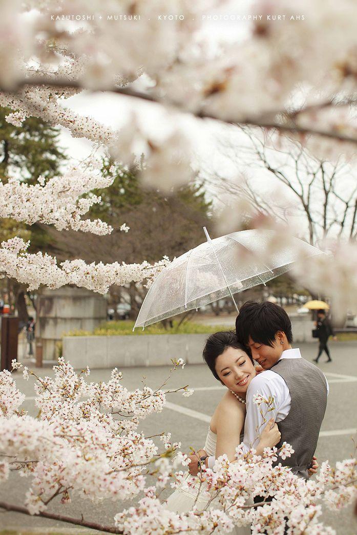 Cherry blossom dating zip
