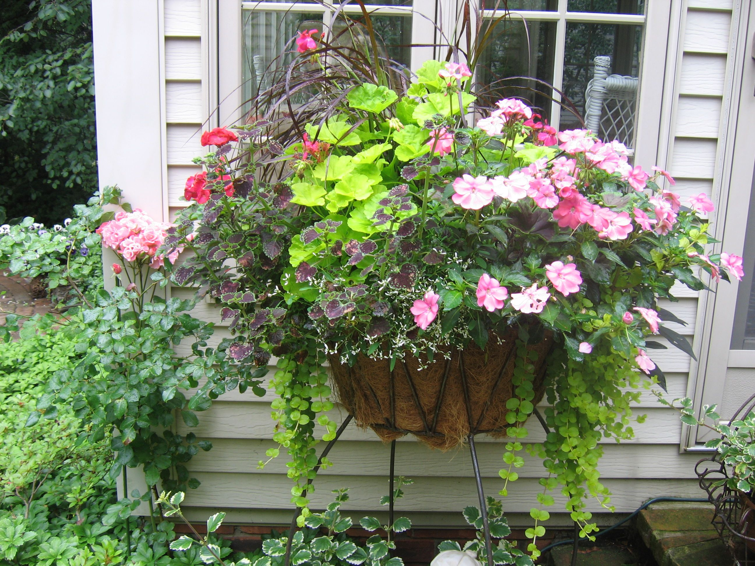 28 best container flower garden pin by stephanie duman for Container gardening ideas