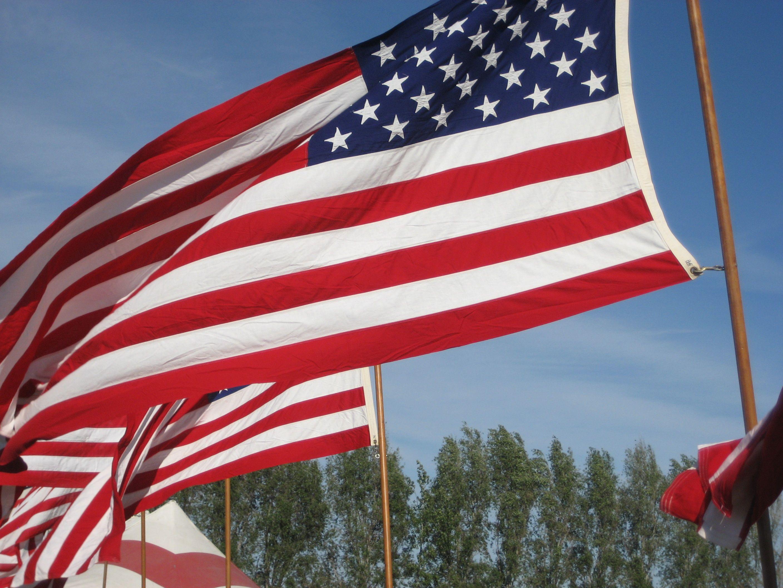 picture of vietnam flag