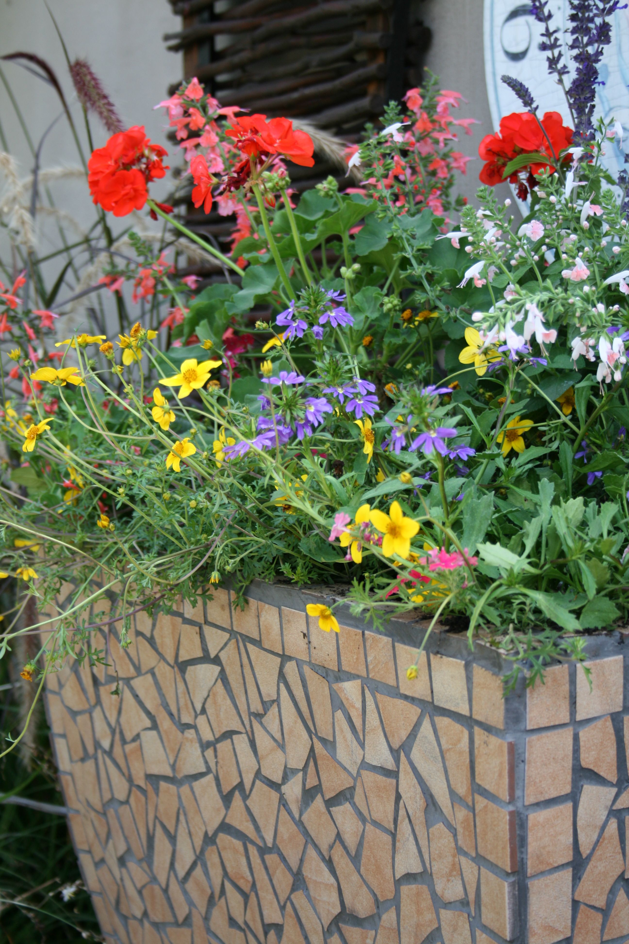 gardening containers container ideas pinterest