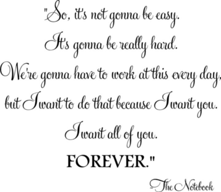 Love Quotes From The Notebook The Notebook quote | L...