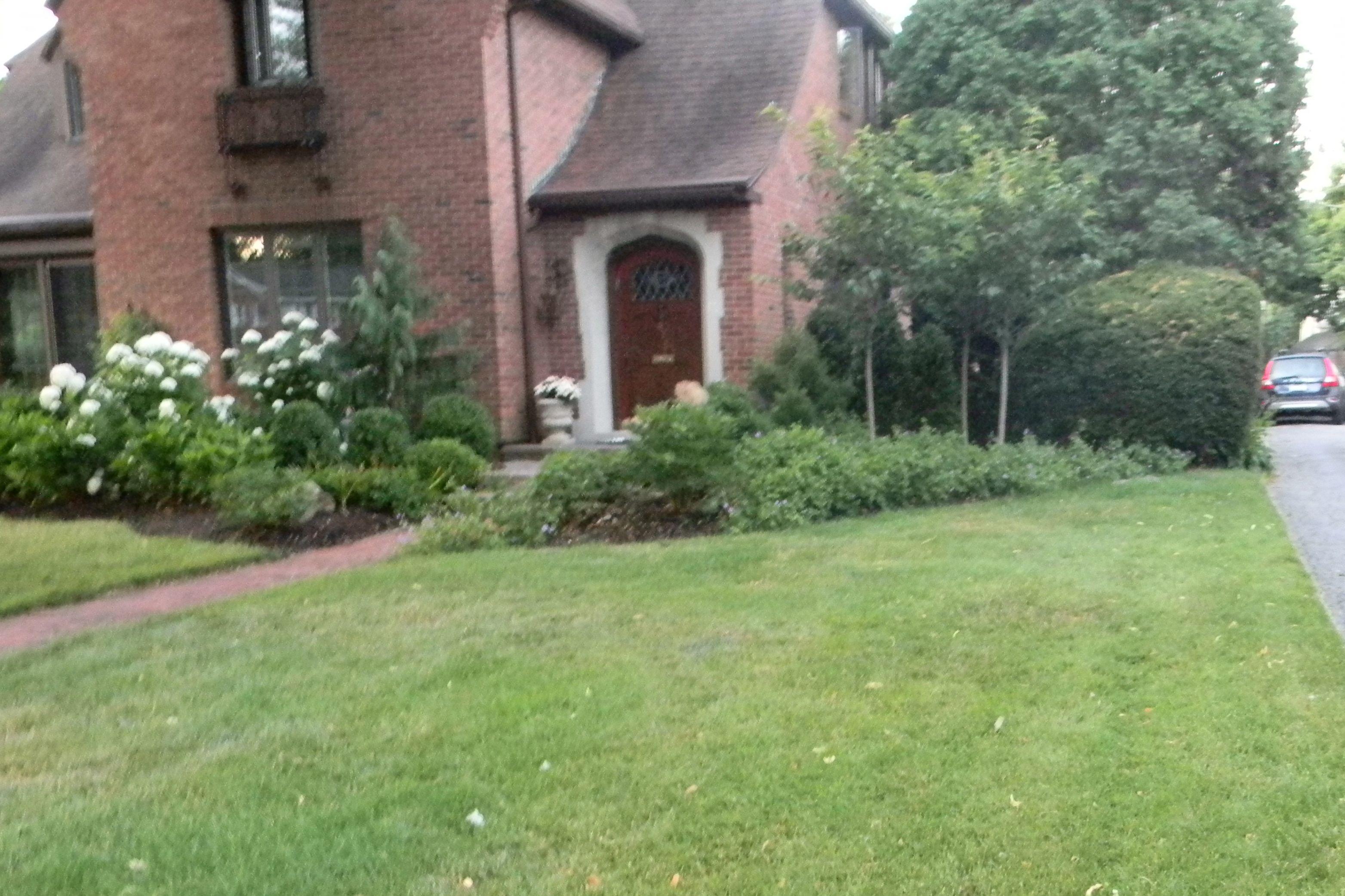 View toward front door garden landscape ideas pinterest for Front door garden ideas