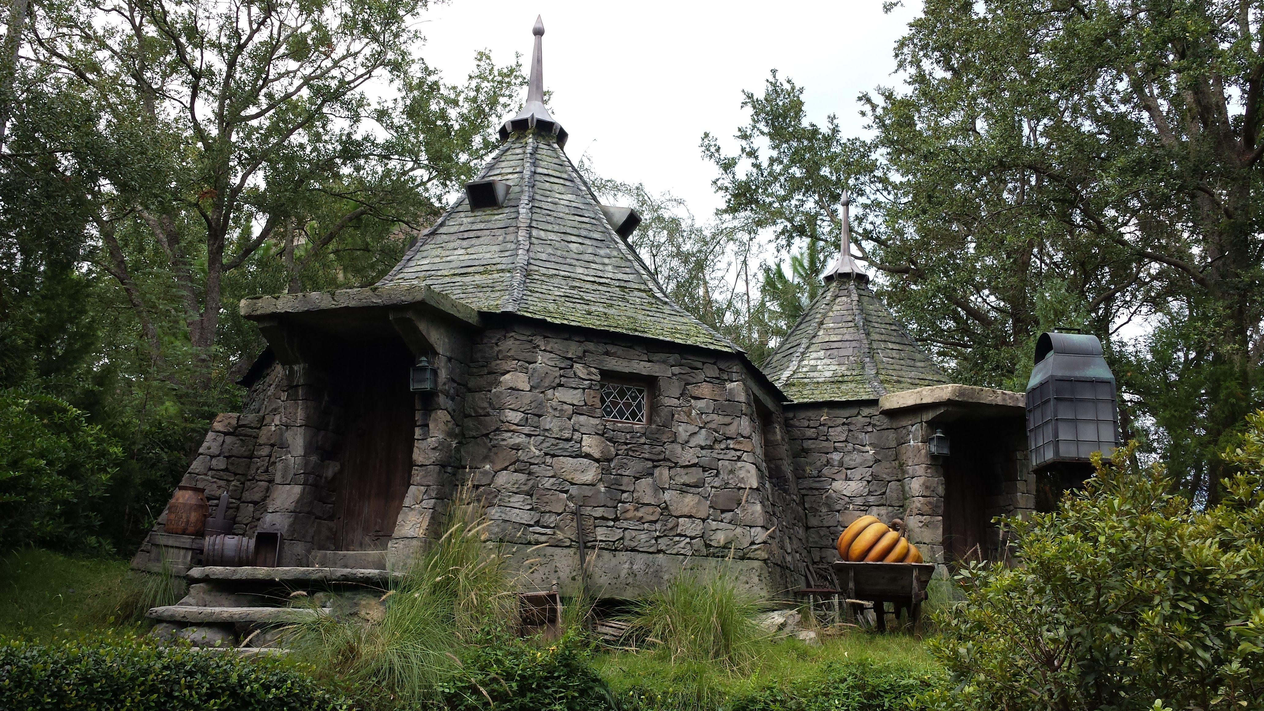 Hagrid 39 s house rubeus hegrid harry potter pinterest What house was hagrid in