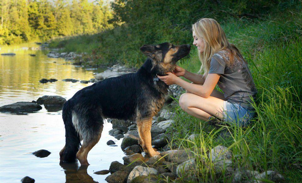 Heartland Amy S Dog