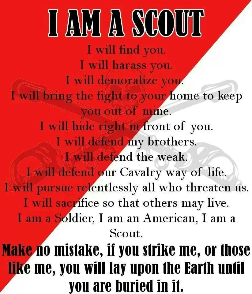 Army Cavalry Scout