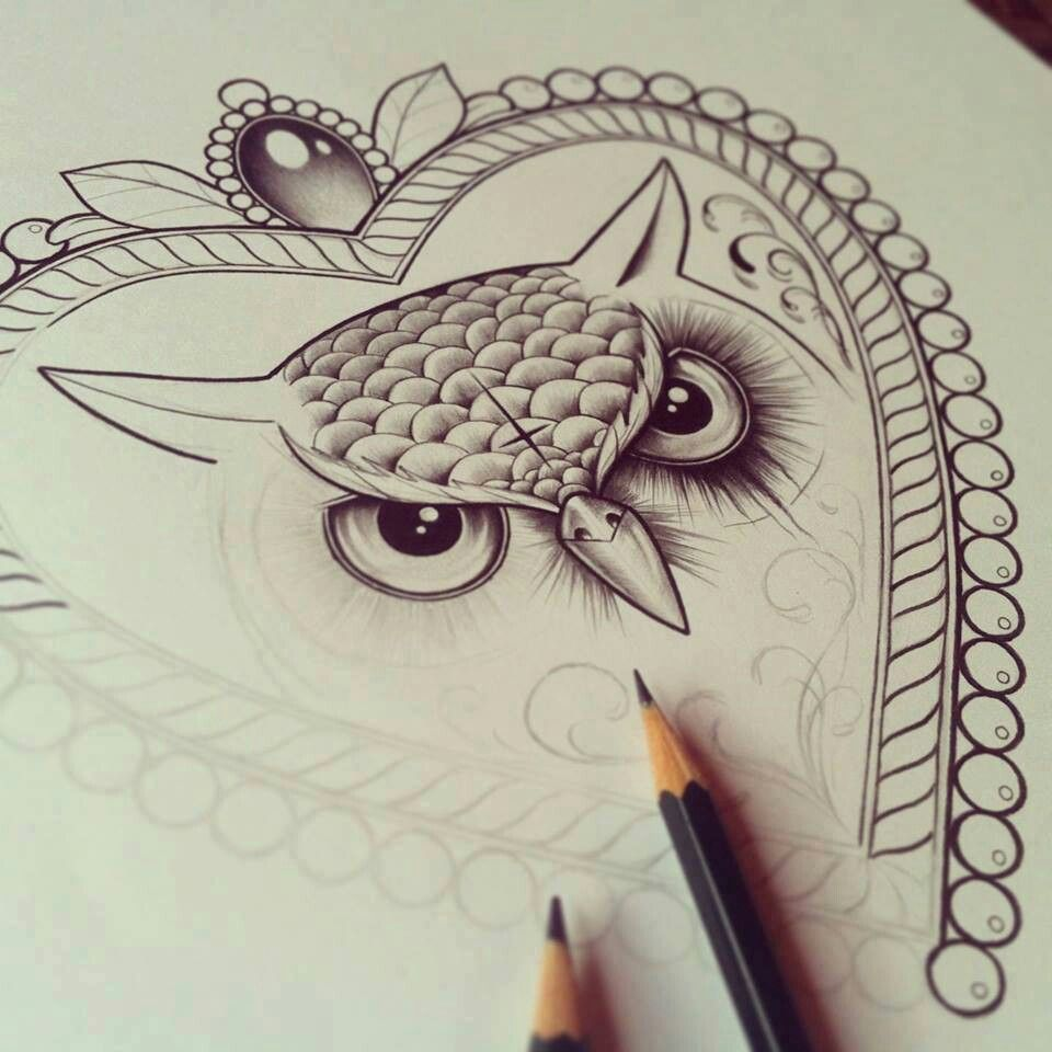 Owl Line Drawing Tattoo : Owl drawing drawings pinterest