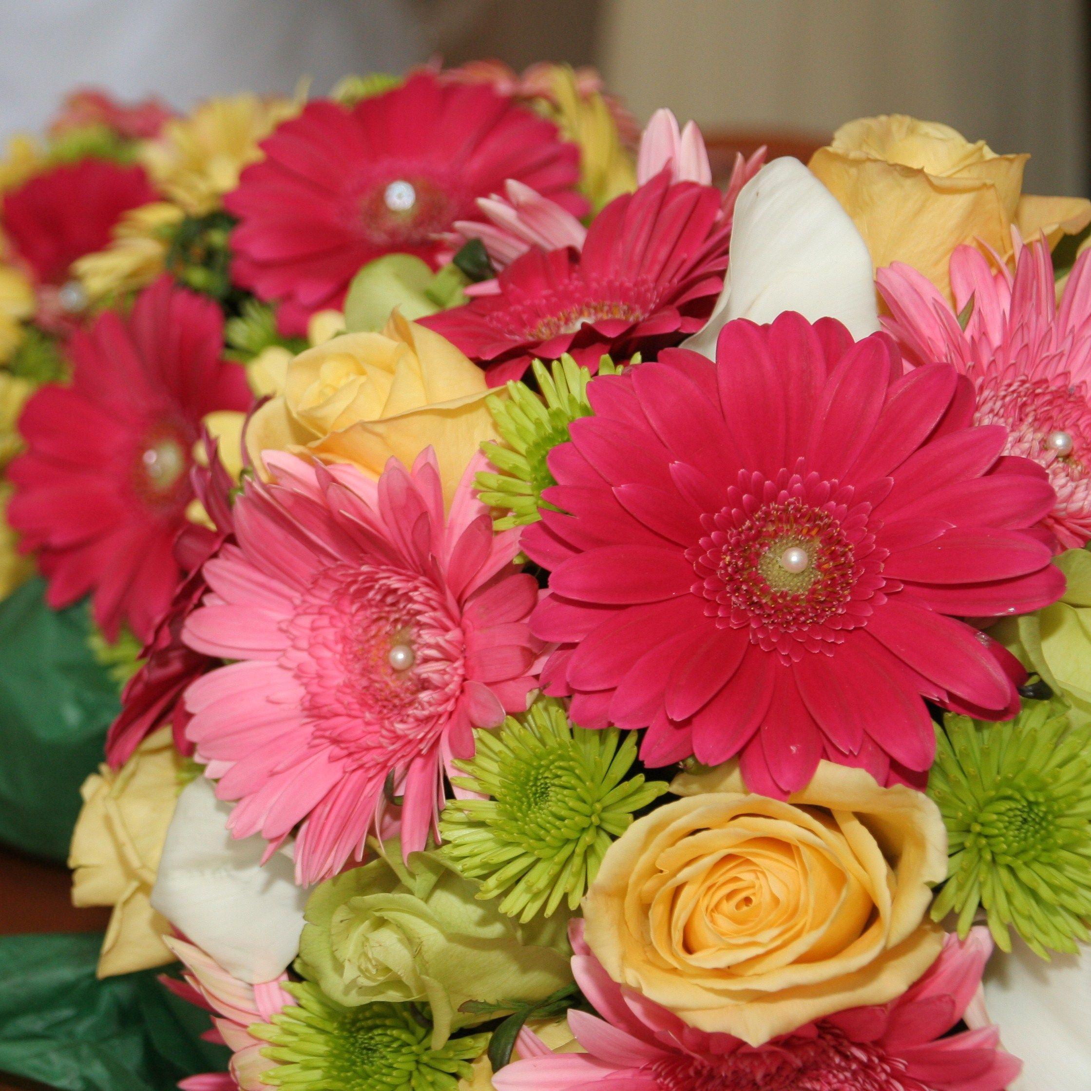 Wedding Flowers With Daisies : Gerber daisy bridal bouquet wedding ideas