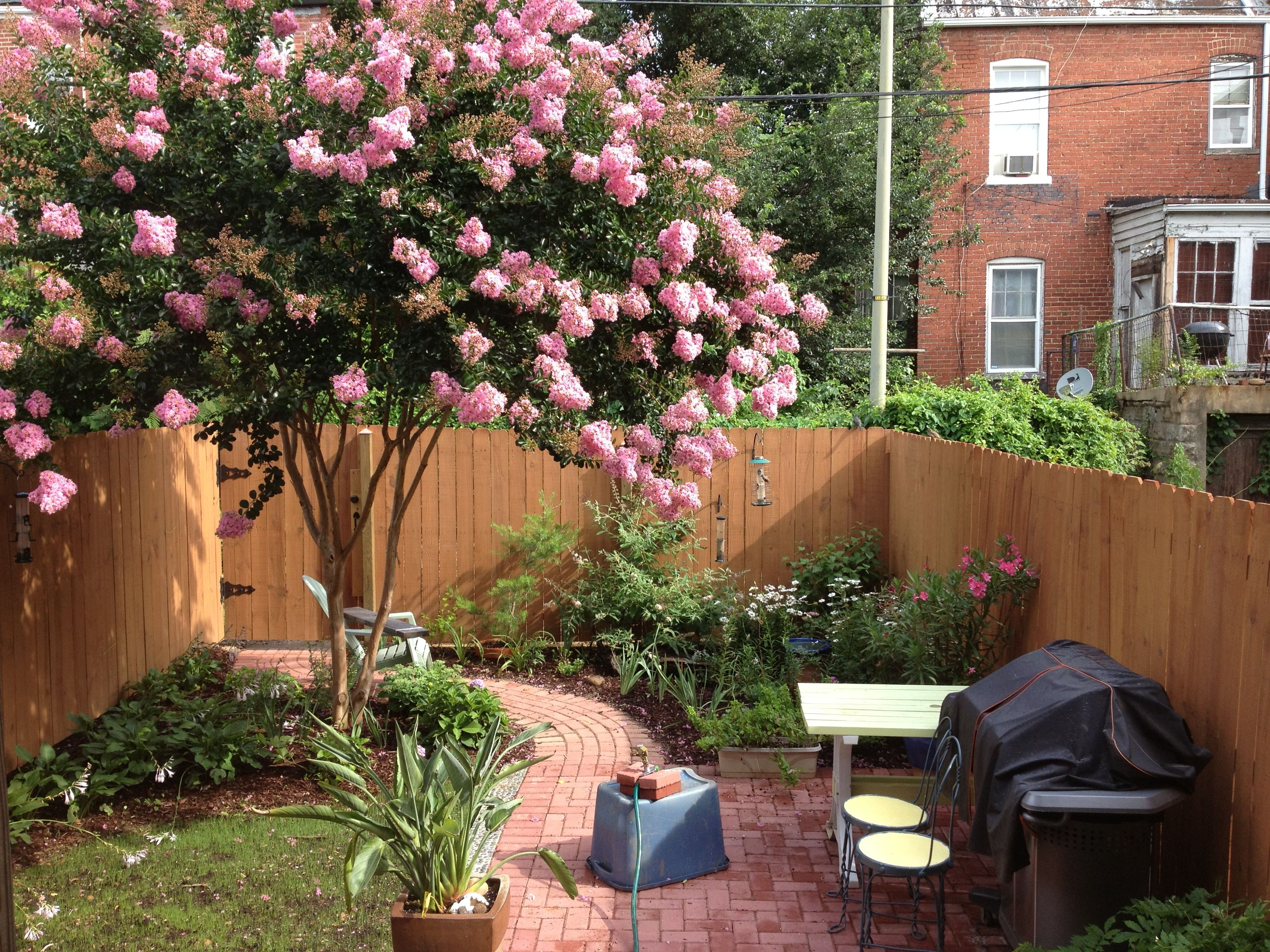 Row House Backyard Ideas :  and flower beds Our DC rowhouse  Yard for the Row House  Pinterest