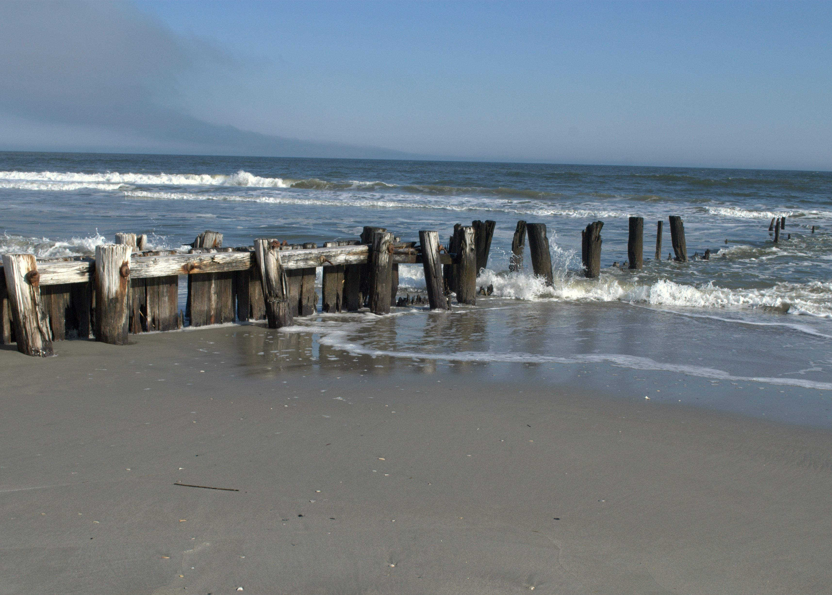 Folly Beach further What Are The Five Best Amenities For Kids At The Sanctuary as well Tami Scott Wedding Folly Beach together with 244730698 as well The Ultimate Restaurant Guide To Folly Beach South Carolina. on beaches at charleston south carolina