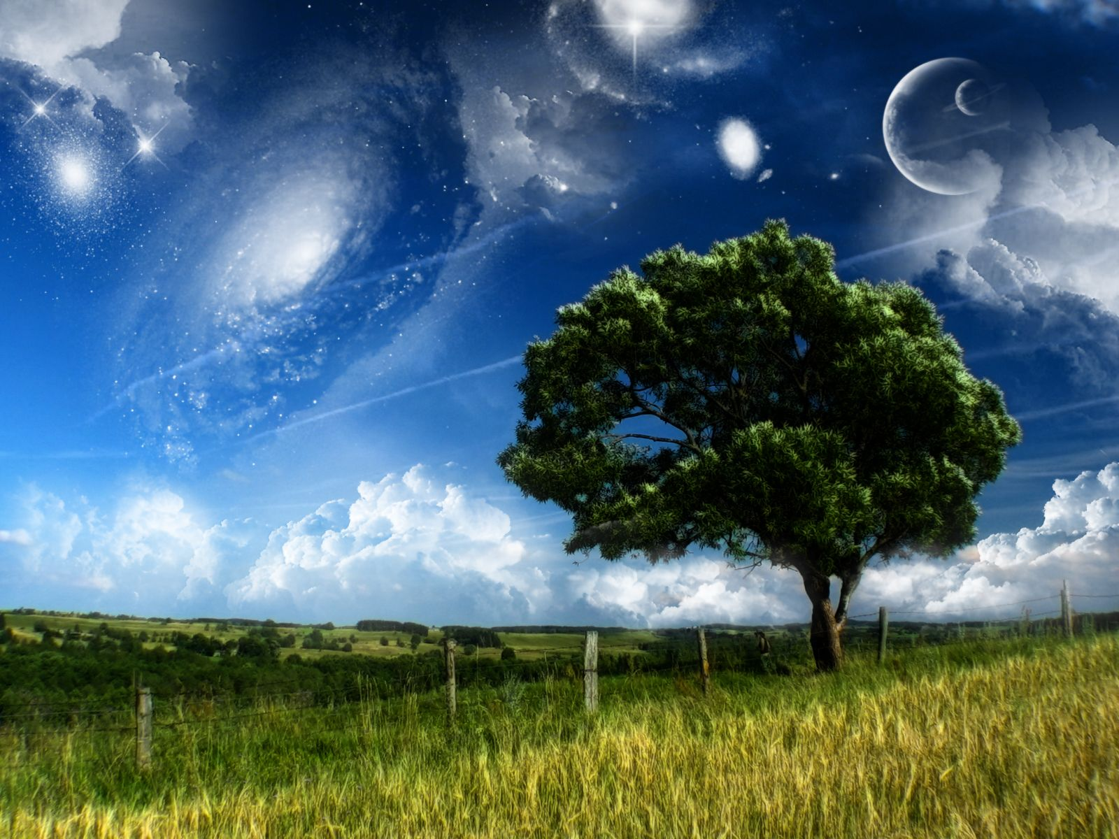 how to make yourself lucid dream