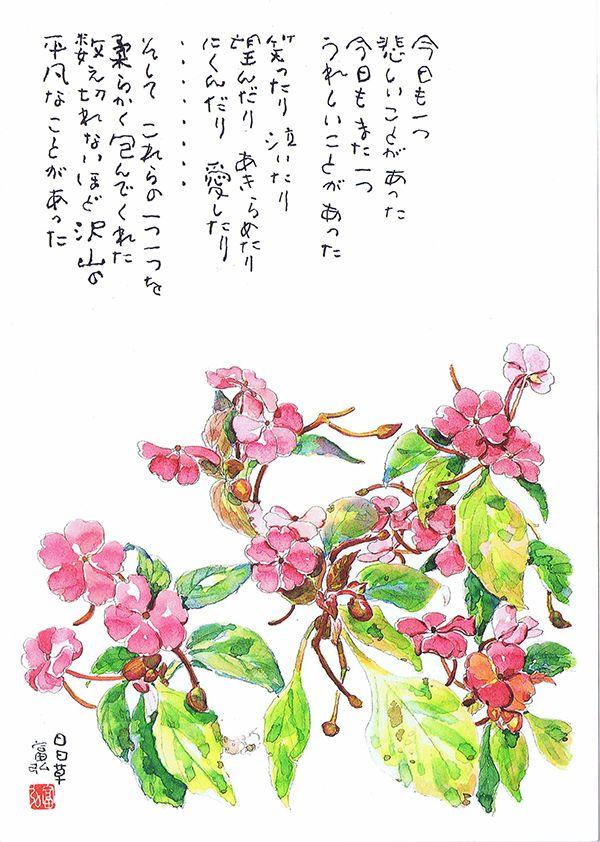星野富弘の画像 p1_3