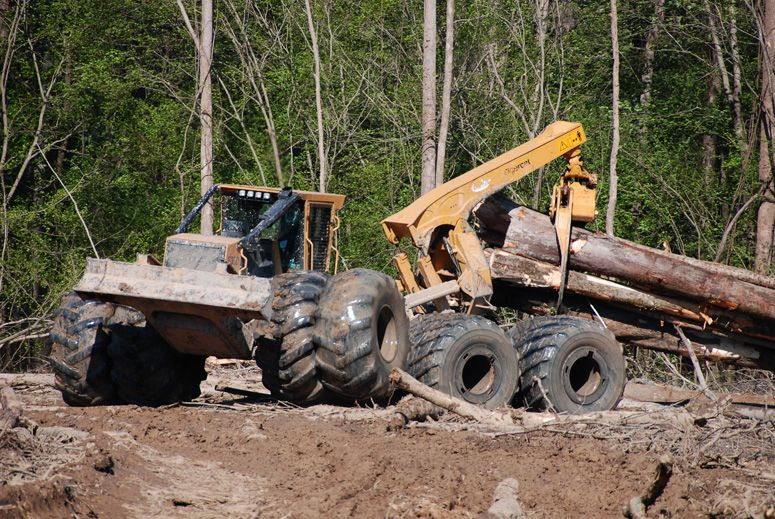 Skidder | Logging, swamp logging, Logging equipment ...