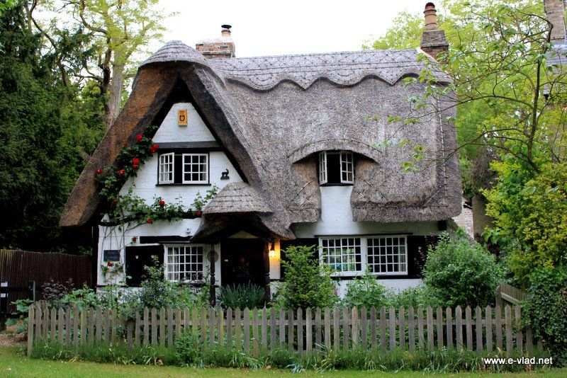 Thatched roofs cottage in the woods pinterest for Pictures of english country cottages