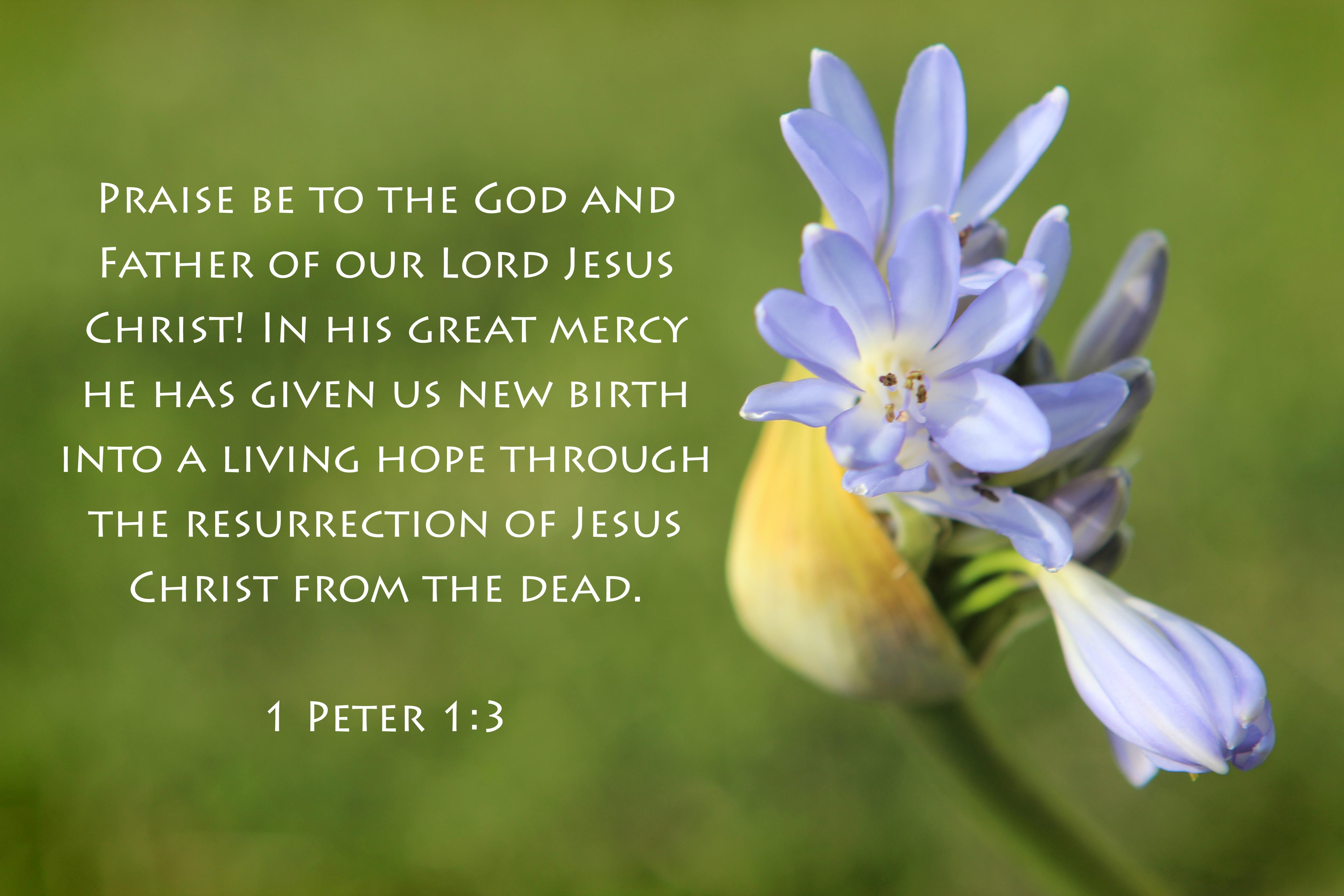 an easter verse i love all year round bible verses