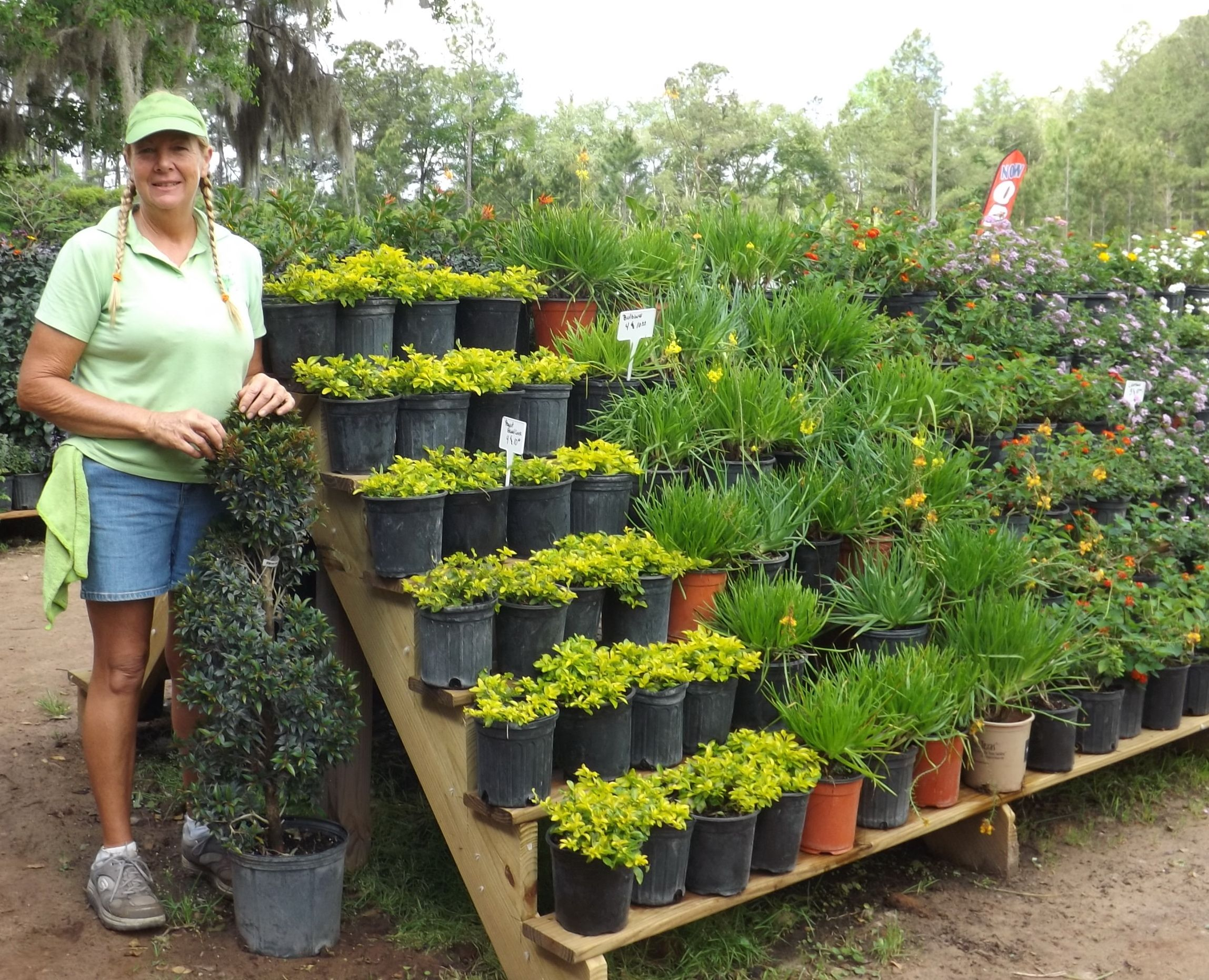 Famous Garden Center Ideas Festooning - Beautiful Garden ...
