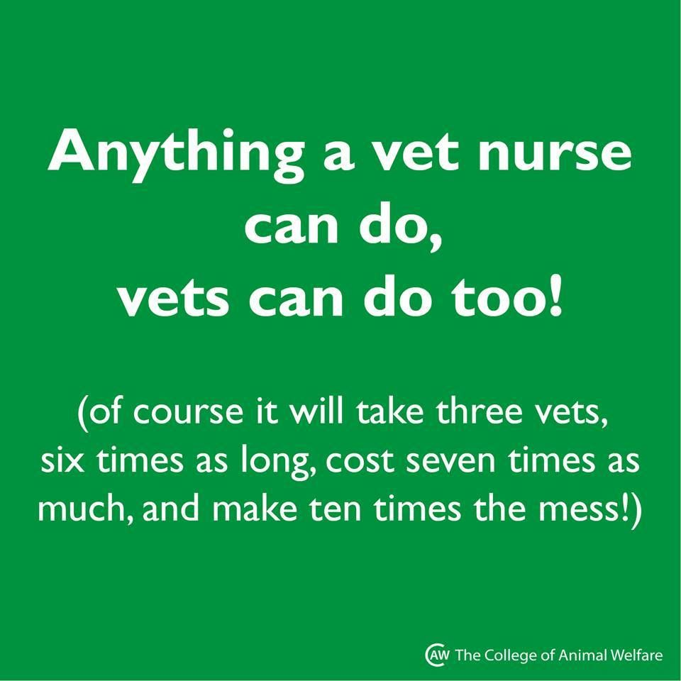 Quotes About Vet Techs. QuotesGram