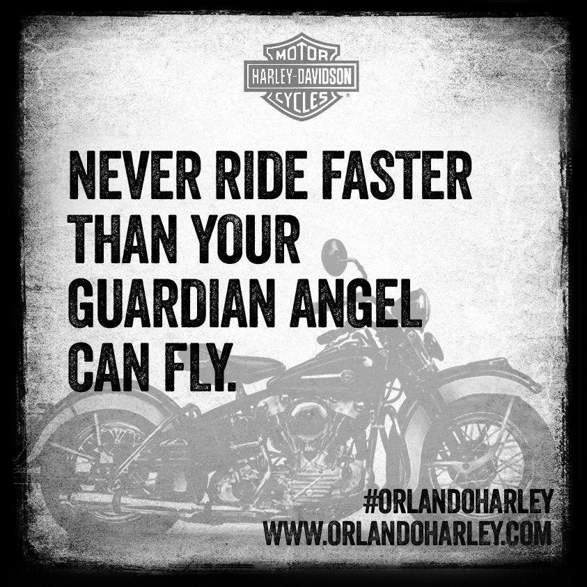 Harley davidson quotes