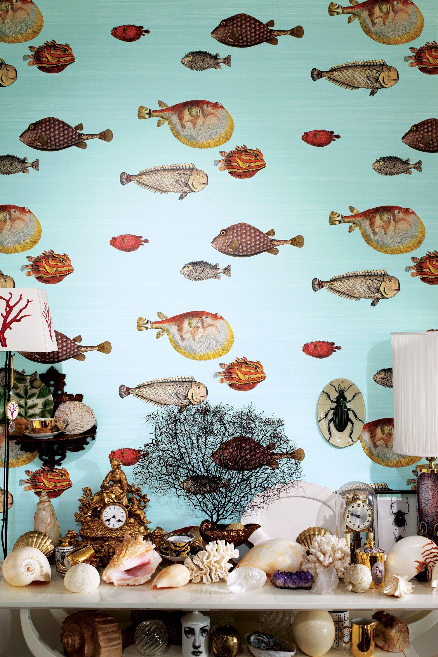 cole and son acquario wallpaper wallpaper wow pinterest