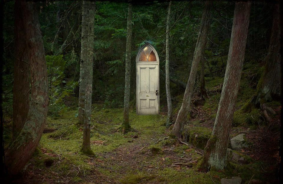 Door In The Forest Never Too Old For A Fairy Tale Pinterest