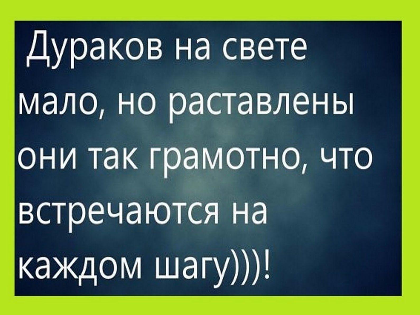 Семь Дураков Анекдот Видео