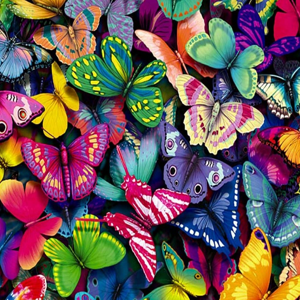 Butterflys in color bright and colorful things pinterest for Bright pretty colors