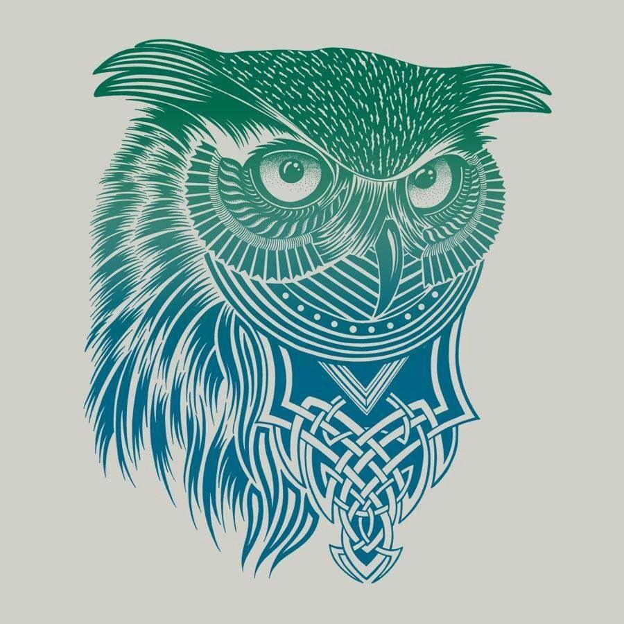 celtic owl owls pinterest. Black Bedroom Furniture Sets. Home Design Ideas
