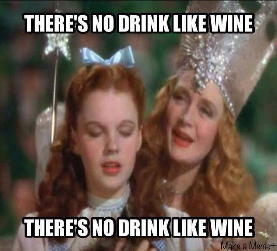 Funny Wine Drinking Meme : Dorothy from wizard of oz quotes quotesgram