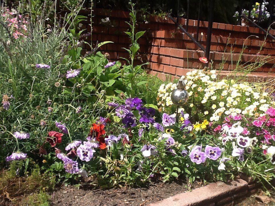 Spring gardening ideas flowers photograph spring flowers for Spring garden ideas